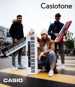 Casiotone_DIV (16)