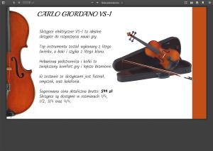 Screenshot_2020-05-06 CARLO GIORDANO VS-1 pdf